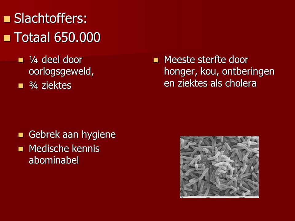 ¼ deel door oorlogsgeweld, ¼ deel door oorlogsgeweld, ¾ ziektes ¾ ziektes Meeste sterfte door honger, kou, ontberingen en ziektes als cholera Meeste s