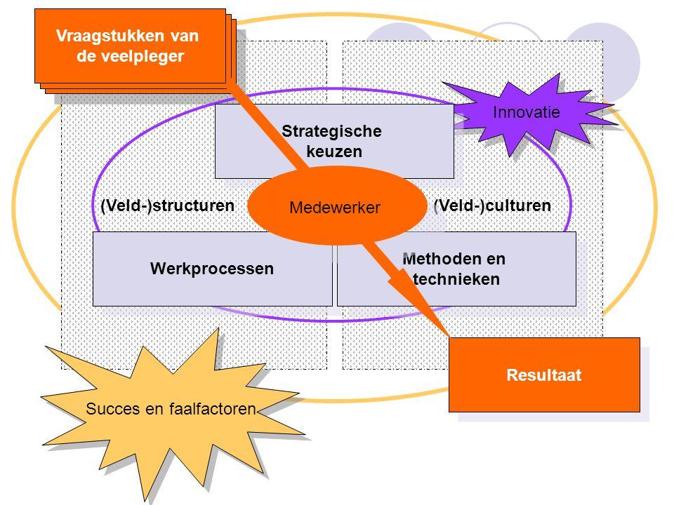 (Veld-)structuren (Veld-)culturen Resultaat Vraagstukken van de veelpleger Vraagstukken van de veelpleger Succes en faalfactoren Innovatie Strategische keuzen Strategische keuzen Werkprocessen Methoden en technieken Methoden en technieken Vraagstukken van de veelpleger Medewerker Vraagstukken van de veelpleger
