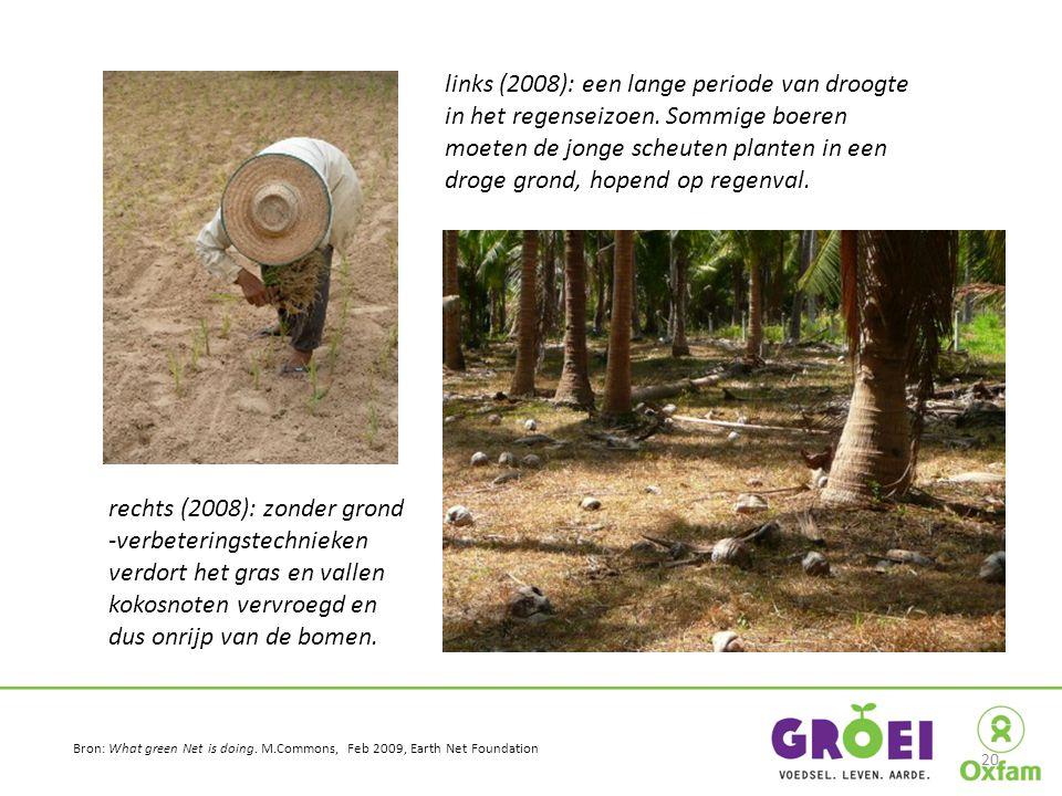 links (2008): een lange periode van droogte in het regenseizoen. Sommige boeren moeten de jonge scheuten planten in een droge grond, hopend op regenva