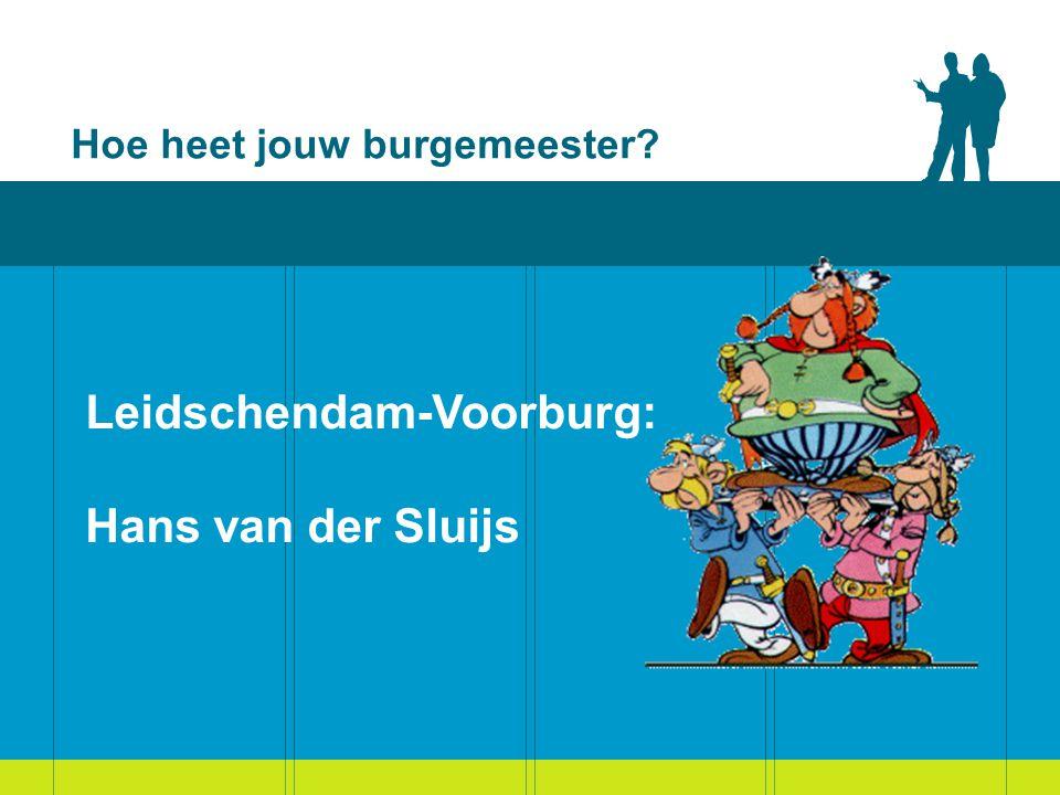 Gemeenteraad Leidschendam-Voorburg: elke politieke partij heeft een fractie VVD:10 zetels CDA: 6 zetels Gemeentebelangen:6 zetels D66: 5 zetels PvdA: 5 zetels GroenLinks: 3 zetels