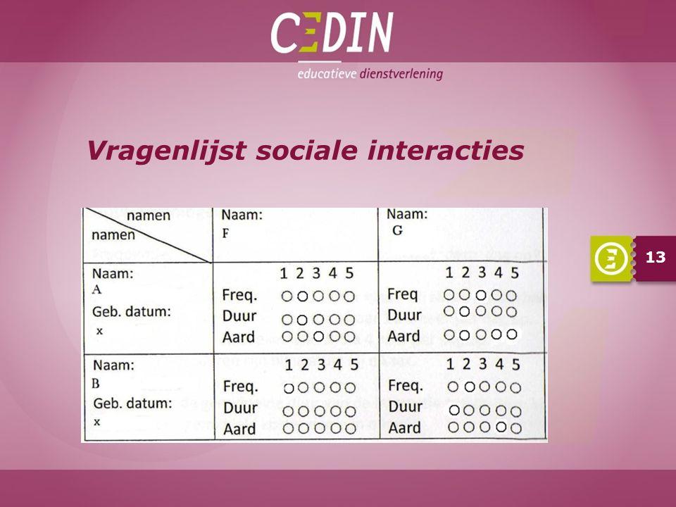 Vragenlijst sociale interacties 13