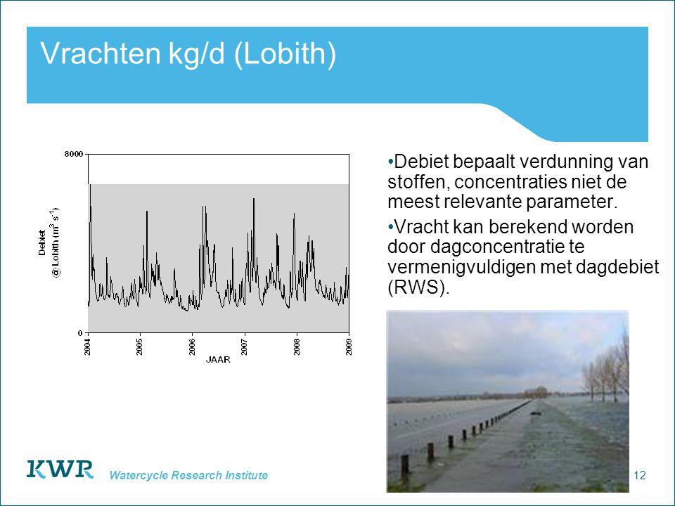 12 Watercycle Research Institute Vrachten kg/d (Lobith) Debiet bepaalt verdunning van stoffen, concentraties niet de meest relevante parameter.