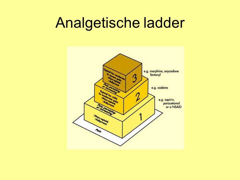 Analgetische ladder