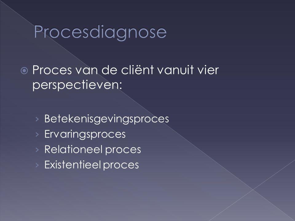  Proces van de cliënt vanuit vier perspectieven: › Betekenisgevingsproces › Ervaringsproces › Relationeel proces › Existentieel proces
