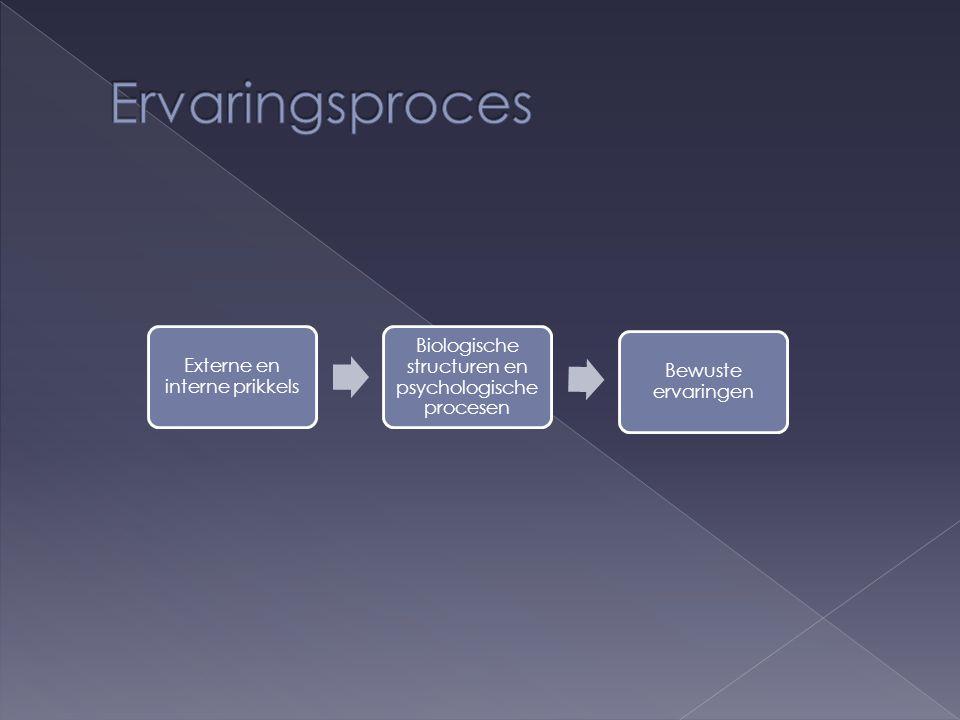 Externe en interne prikkels Biologische structuren en psychologische procesen Bewuste ervaringen