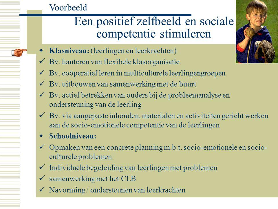 Een positief zelfbeeld en sociale competentie stimuleren Voorbeeld  Klasniveau: (leerlingen en leerkrachten) Bv. hanteren van flexibele klasorganisat