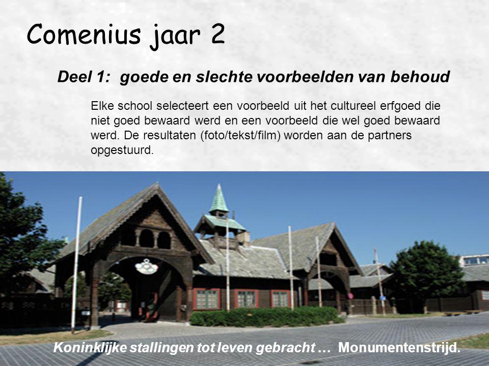 Comenius jaar 2 Deel 1: goede en slechte voorbeelden van behoud Elke school selecteert een voorbeeld uit het cultureel erfgoed die niet goed bewaard w