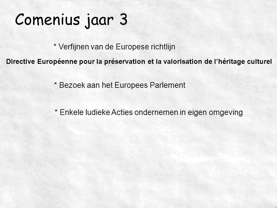 Comenius jaar 3 * Verfijnen van de Europese richtlijn Directive Européenne pour la préservation et la valorisation de l'héritage culturel * Bezoek aan