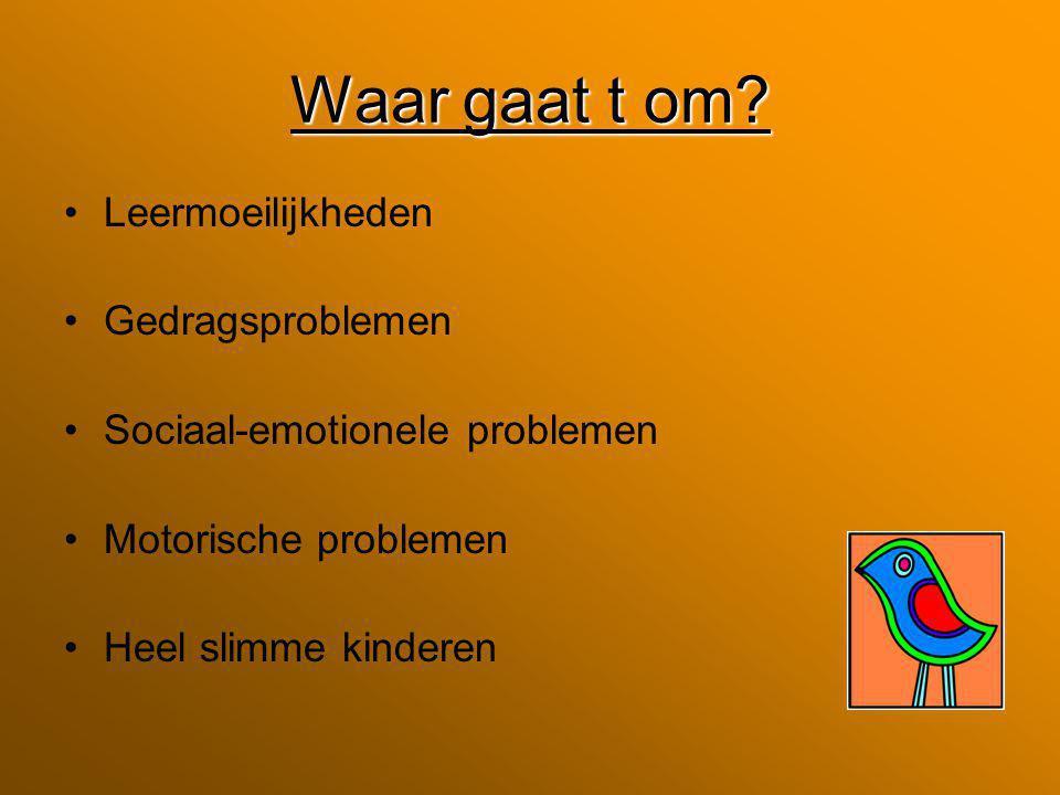 Waar gaat t om? Leermoeilijkheden Gedragsproblemen Sociaal-emotionele problemen Motorische problemen Heel slimme kinderen