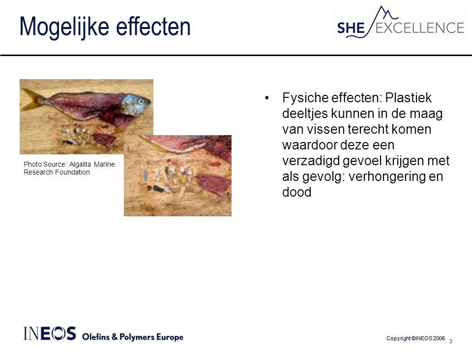 Copyright ©INEOS 2006 3 Mogelijke effecten Fysiche effecten: Plastiek deeltjes kunnen in de maag van vissen terecht komen waardoor deze een verzadigd gevoel krijgen met als gevolg: verhongering en dood Photo Source: Algalita Marine Research Foundation