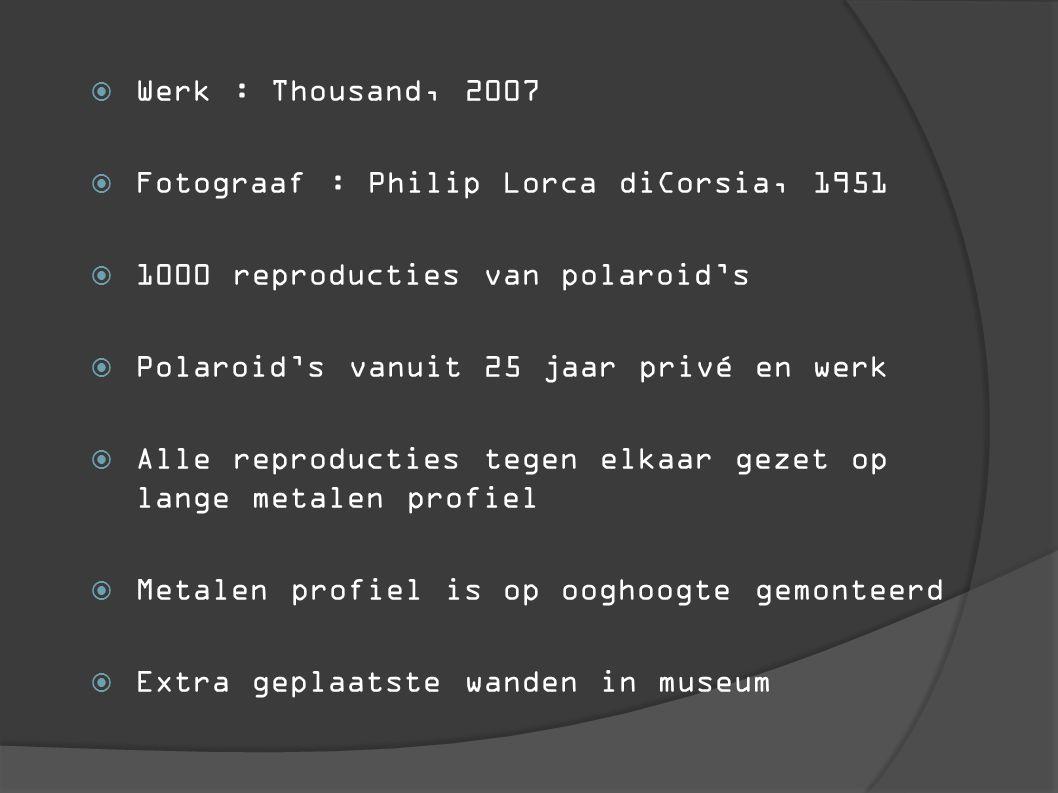  Werk : Thousand, 2007  Fotograaf : Philip Lorca diCorsia, 1951  1000 reproducties van polaroid's  Polaroid's vanuit 25 jaar privé en werk  Alle