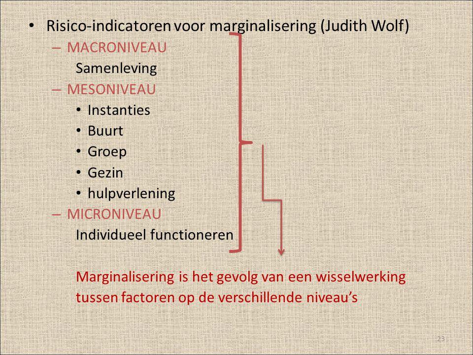 Risico-indicatoren voor marginalisering (Judith Wolf) – MACRONIVEAU Samenleving – MESONIVEAU Instanties Buurt Groep Gezin hulpverlening – MICRONIVEAU