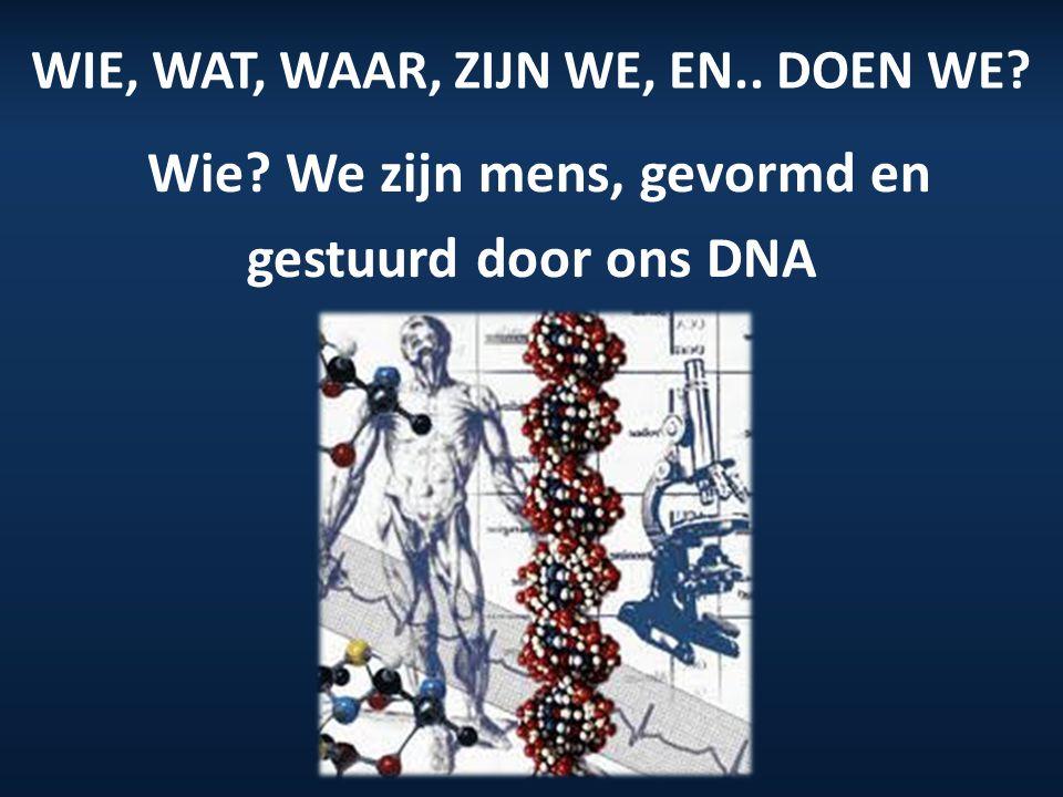 WIE, WAT, WAAR, ZIJN WE, EN.. DOEN WE? Wie? We zijn mens, gevormd en gestuurd door ons DNA