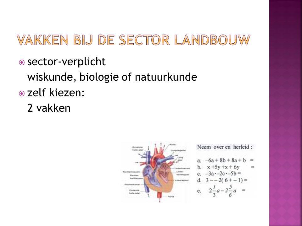  sector-verplicht wiskunde, biologie of natuurkunde  zelf kiezen: 2 vakken