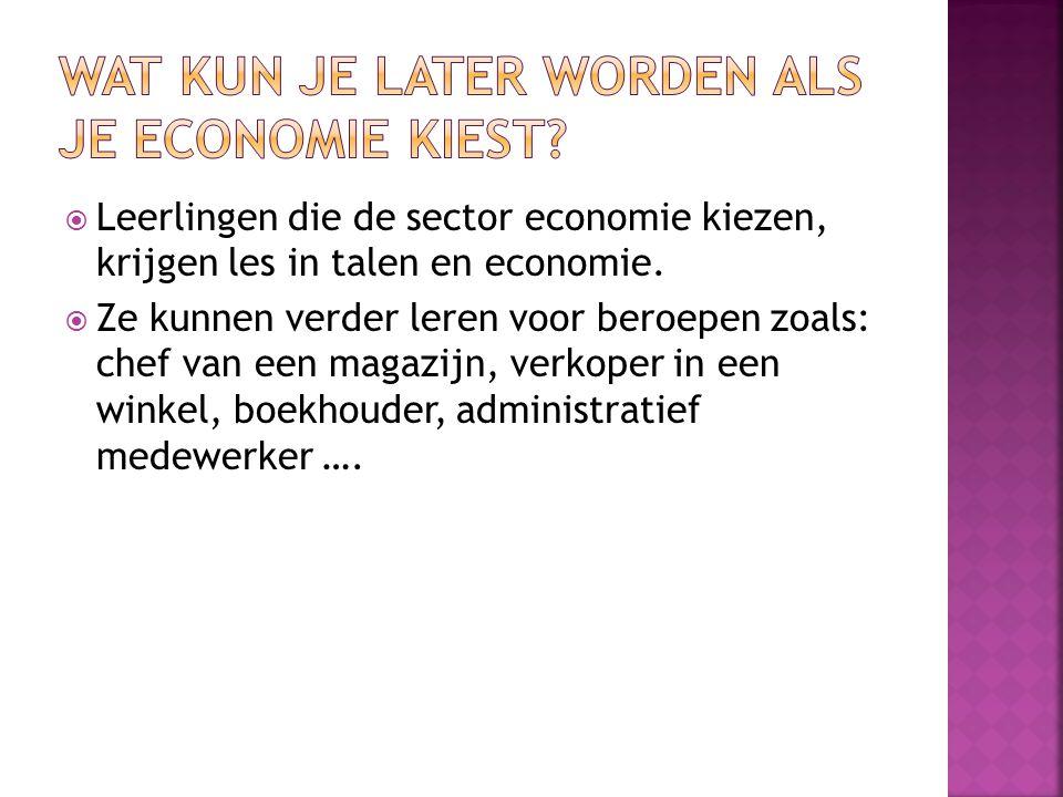  Leerlingen die de sector economie kiezen, krijgen les in talen en economie.