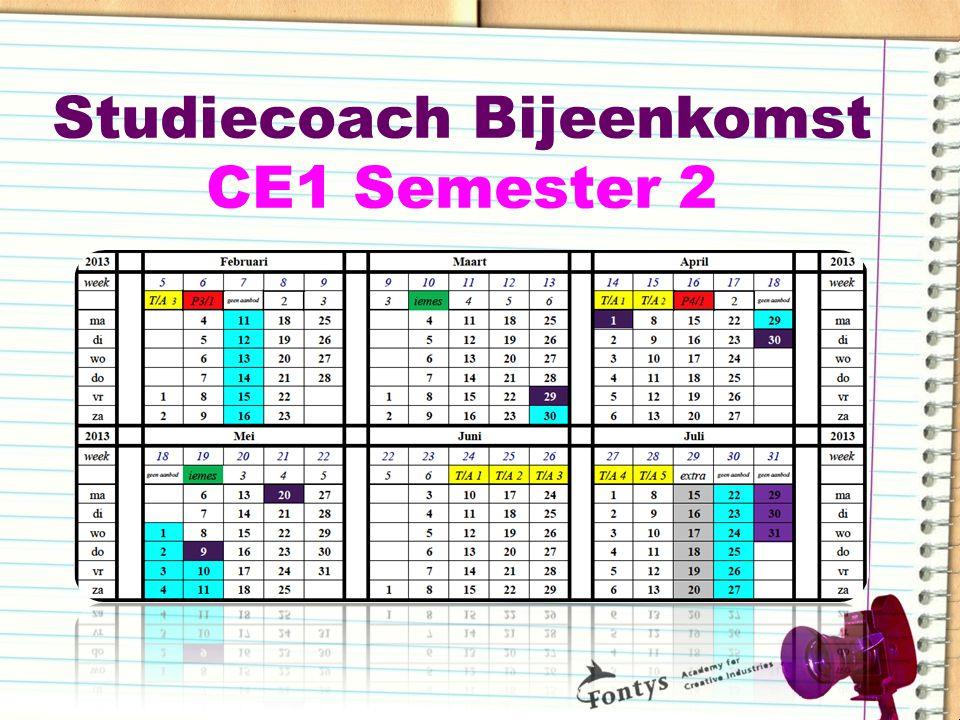 Studiecoach Bijeenkomst CE1 Semester 2