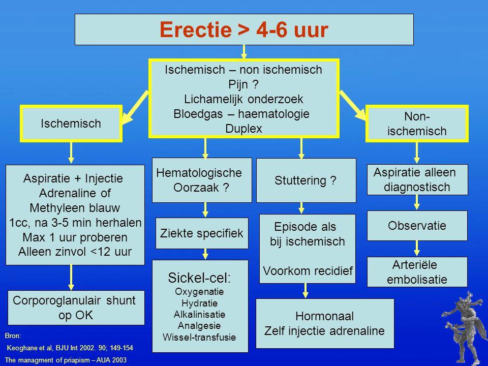 Erectie > 4-6 uur Ischemisch – non ischemisch Pijn ? Lichamelijk onderzoek Bloedgas – haematologie Duplex Ischemisch Non- ischemisch Hematologische Oo