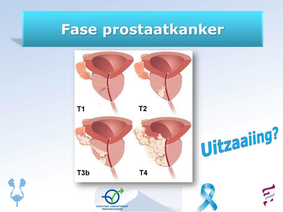 Fase prostaatkanker