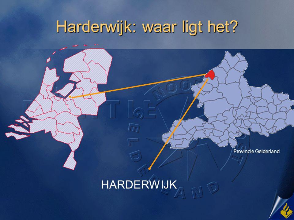 Welkom in Harderwijk Stad met 45000 inwoners, met o.a @@ marokkanen en @@ turken.