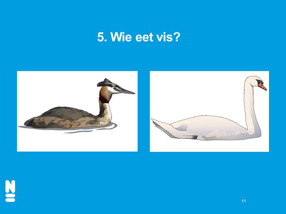 11 5. Wie eet vis?