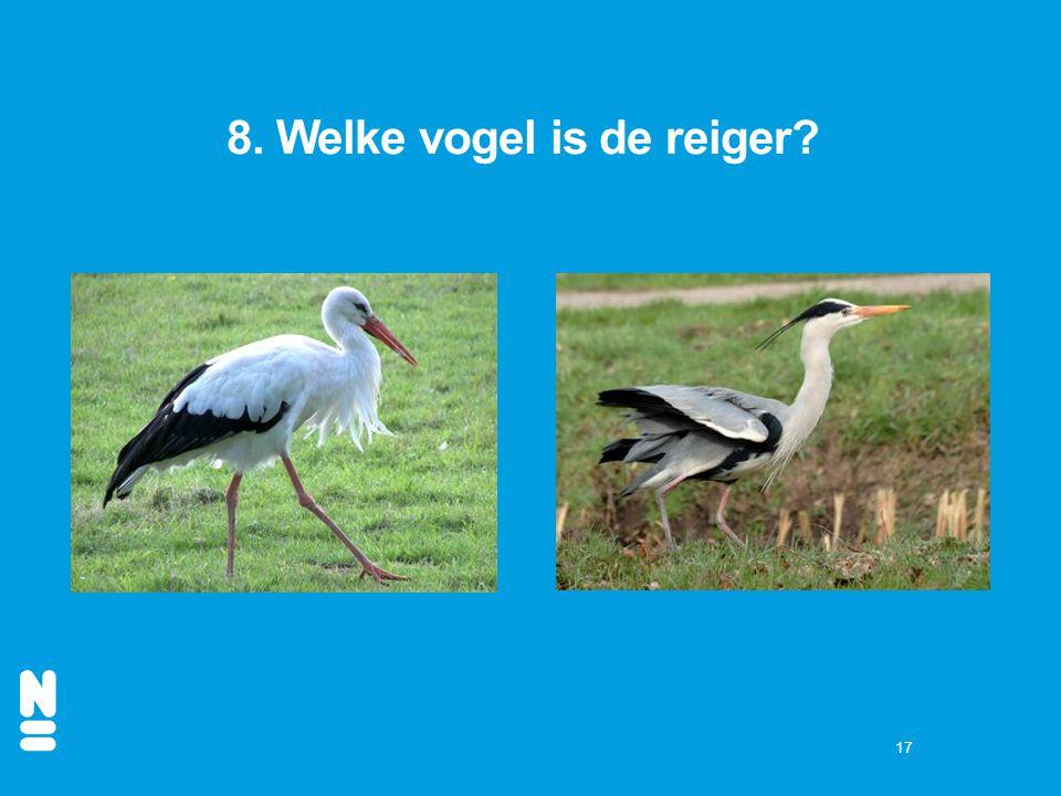 17 8. Welke vogel is de reiger?