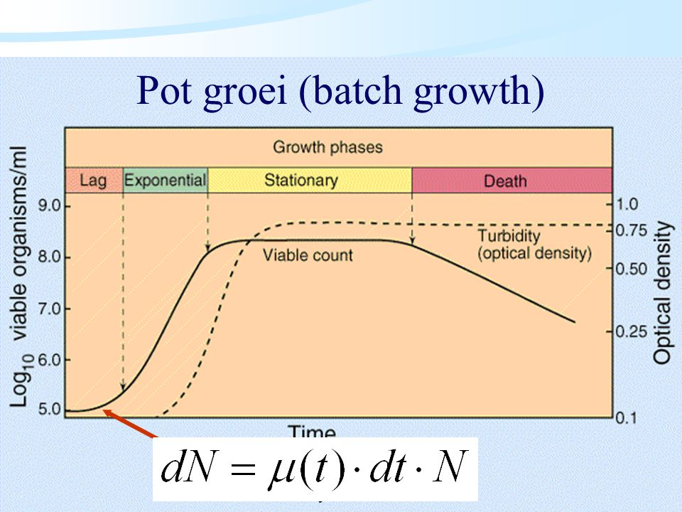 Algemene Microbiologie Pot groei (batch growth)