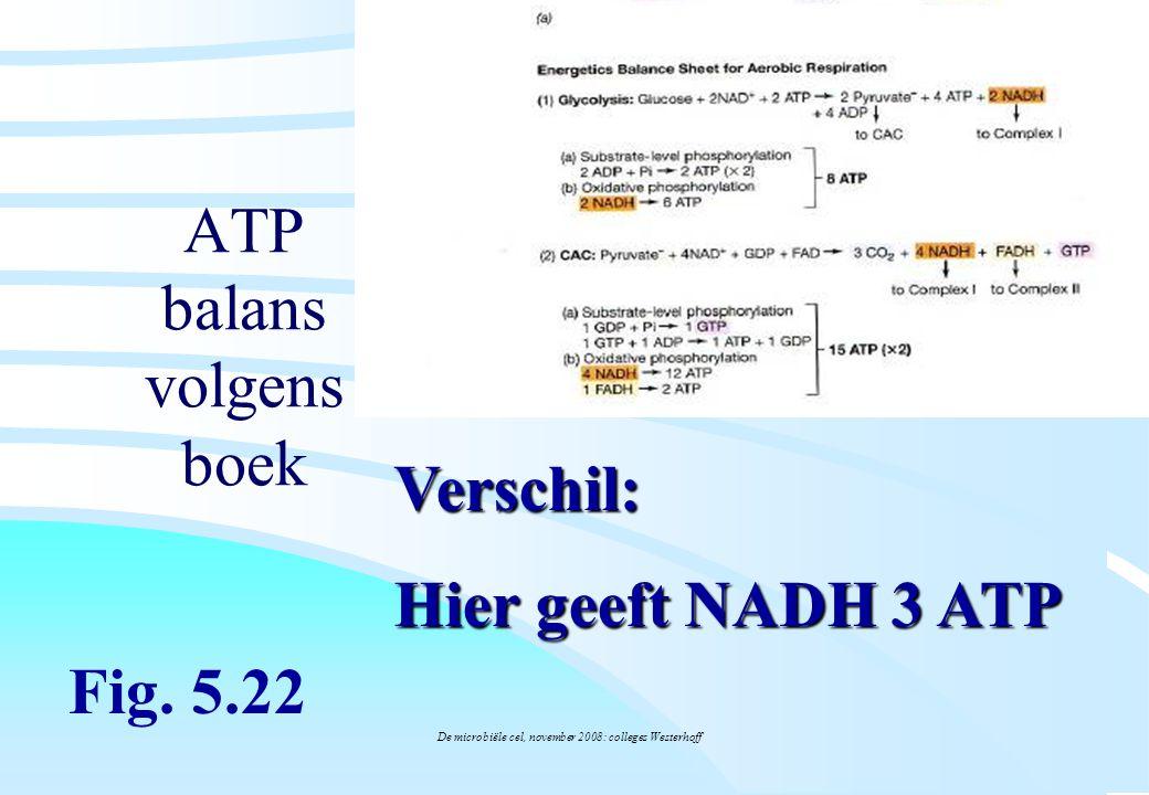De microbiële cel, november 2008: colleges Westerhoff ATP balans volgens boek Fig. 5.22 Verschil: Hier geeft NADH 3 ATP