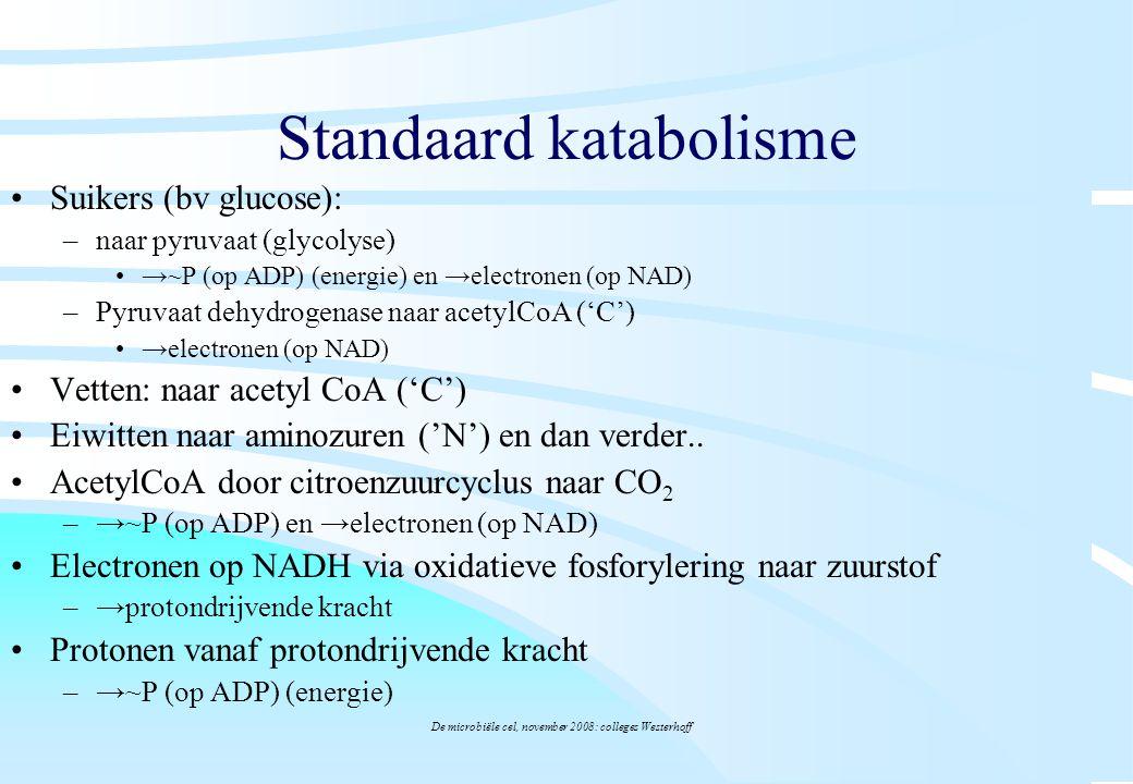 De microbiële cel, november 2008: colleges Westerhoff Standaard katabolisme Suikers (bv glucose): –naar pyruvaat (glycolyse) →~P (op ADP) (energie) en