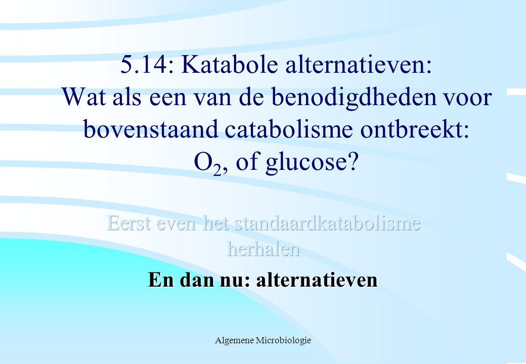 Algemene Microbiologie 5.14: Katabole alternatieven: Wat als een van de benodigdheden voor bovenstaand catabolisme ontbreekt: O 2, of glucose?
