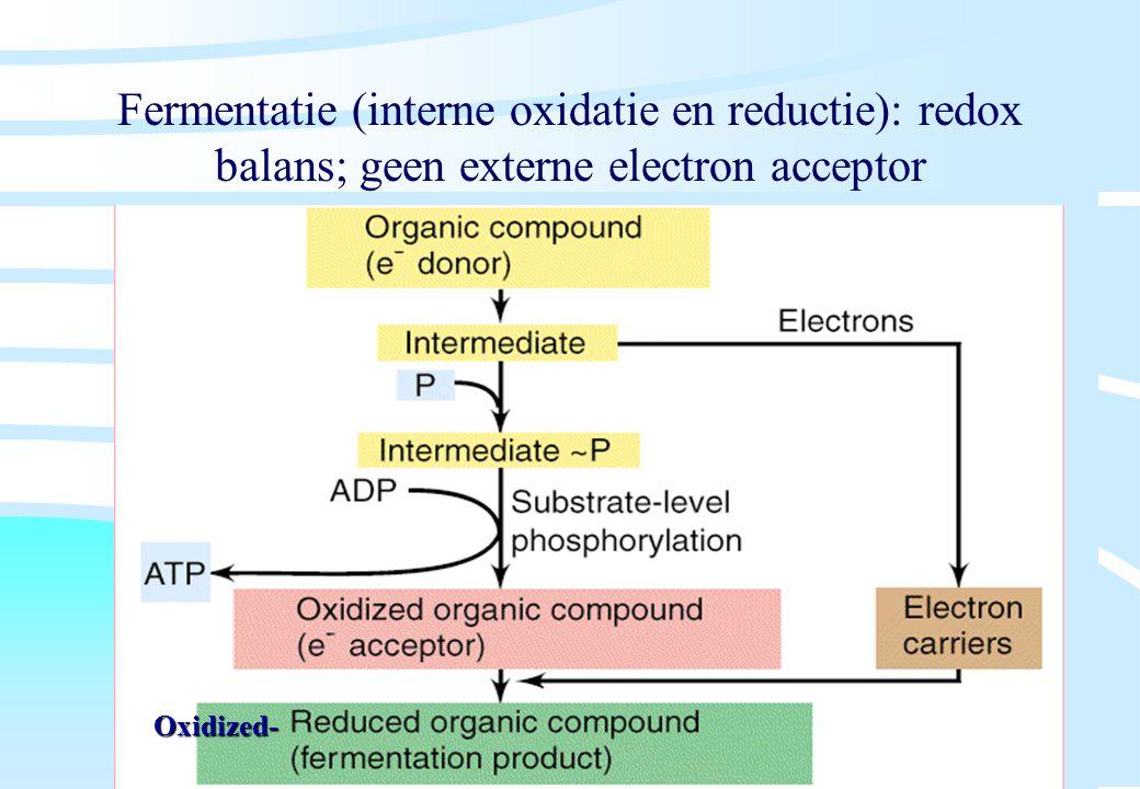 De microbiële cel, november 2008: colleges Westerhoff Fermentatie (interne oxidatie en reductie): redox balans; geen externe electron acceptor Oxidize
