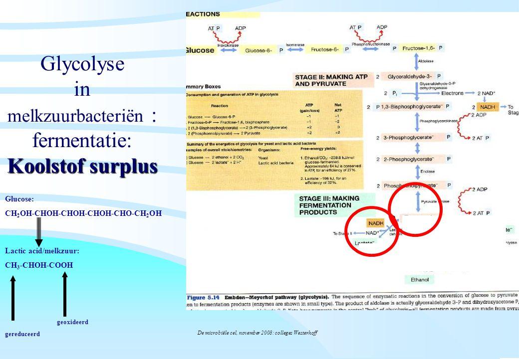 De microbiële cel, november 2008: colleges Westerhoff Koolstof surplus Glycolyse in melkzuurbacteriën : fermentatie: Koolstof surplus Glucose: CH 2 OH