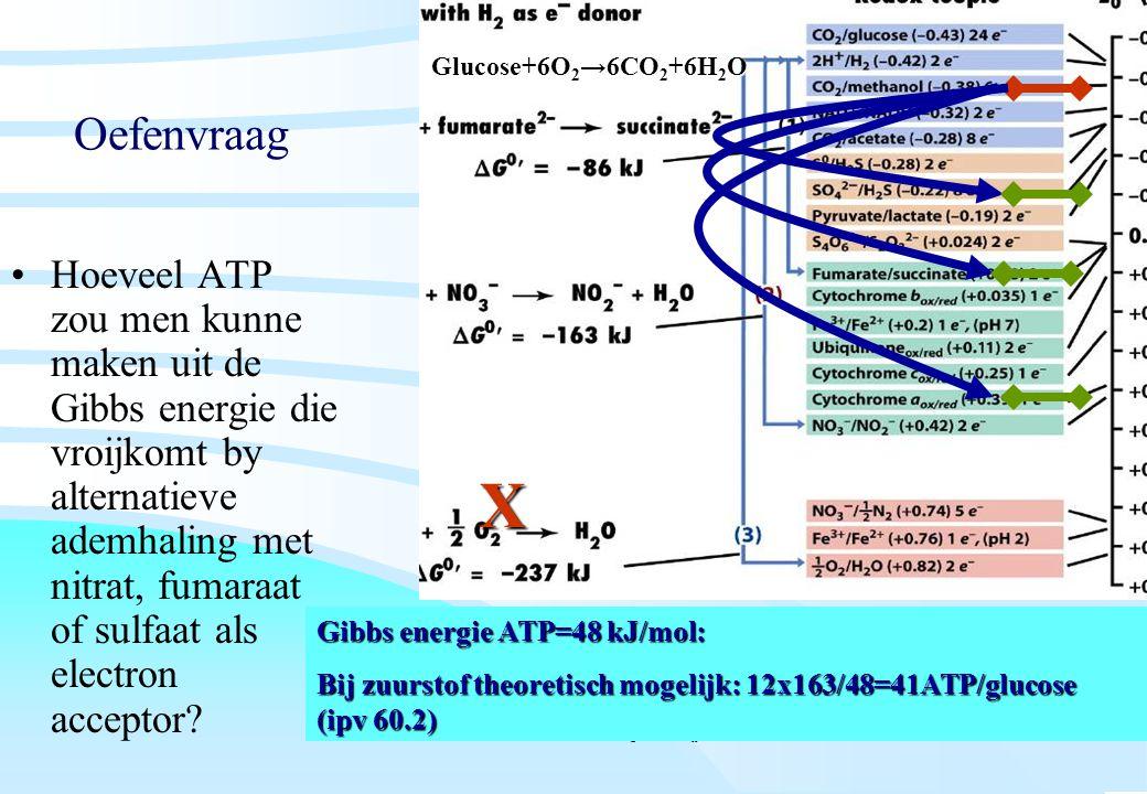 De microbiële cel, november 2008: colleges Westerhoff Oefenvraag Hoeveel ATP zou men kunne maken uit de Gibbs energie die vroijkomt by alternatieve ad