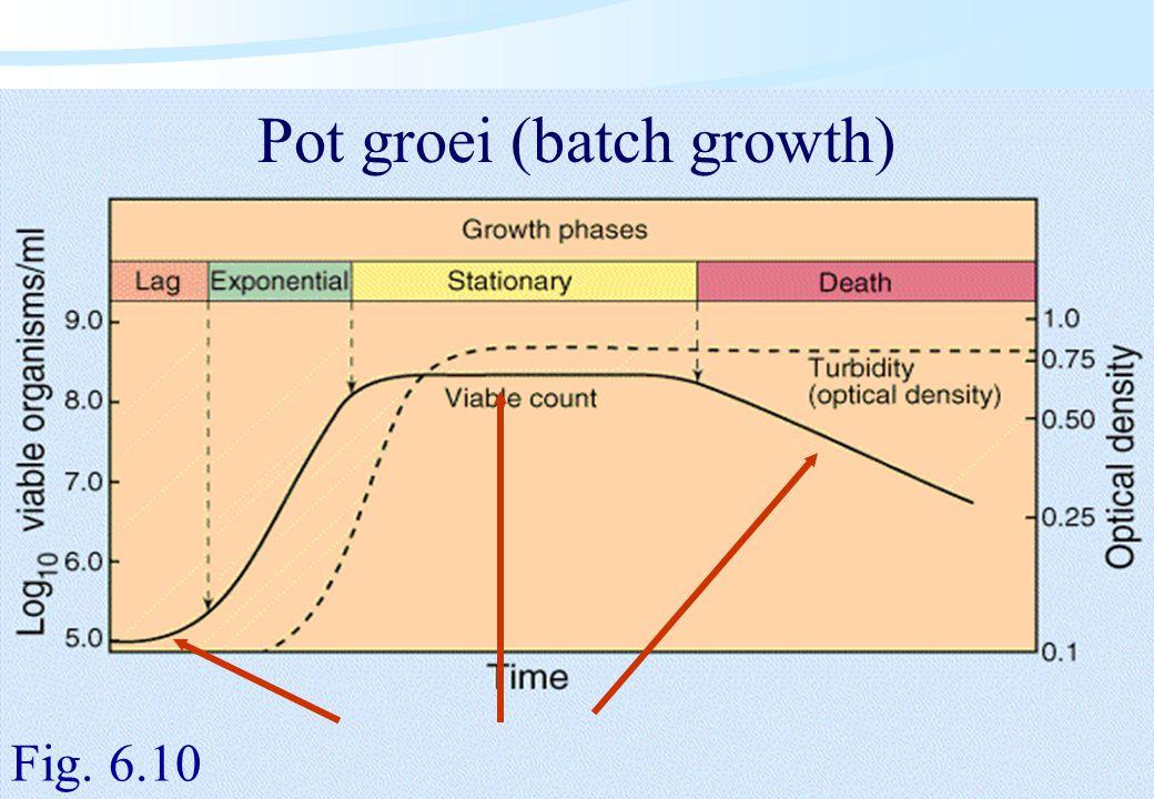 De microbiële cel, november 2008: colleges Westerhoff Pot groei (batch growth) Fig. 6.10