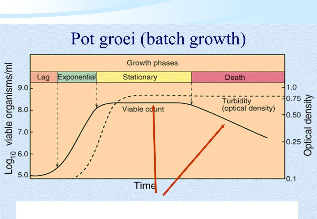 De microbiële cel, november 2008: colleges Westerhoff Pot groei (batch growth)