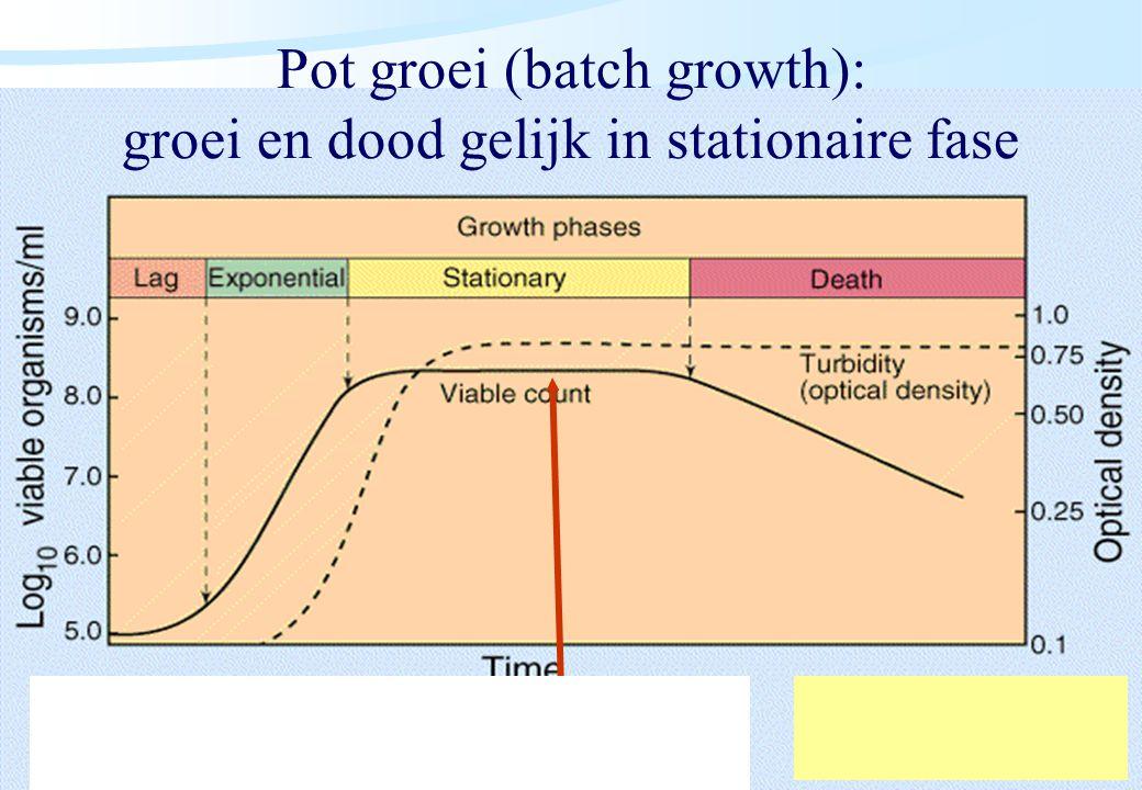De microbiële cel, november 2008: colleges Westerhoff Pot groei (batch growth): groei en dood gelijk in stationaire fase