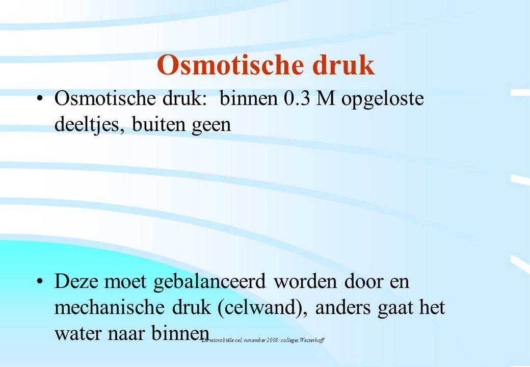 De microbiële cel, november 2008: colleges Westerhoff Osmotische druk Osmotische druk: binnen 0.3 M opgeloste deeltjes, buiten geen Deze moet gebalanc
