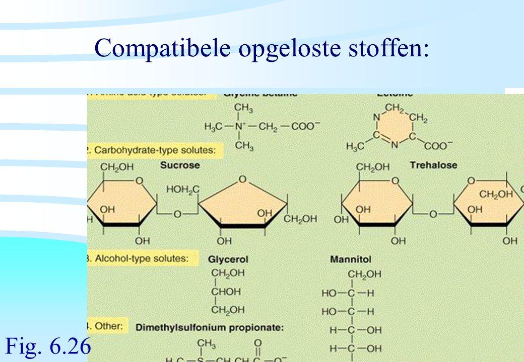De microbiële cel, november 2008: colleges Westerhoff Compatibele opgeloste stoffen: Fig. 6.26