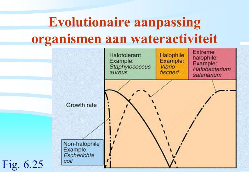 De microbiële cel, november 2008: colleges Westerhoff Evolutionaire aanpassing organismen aan wateractiviteit Fig. 6.25