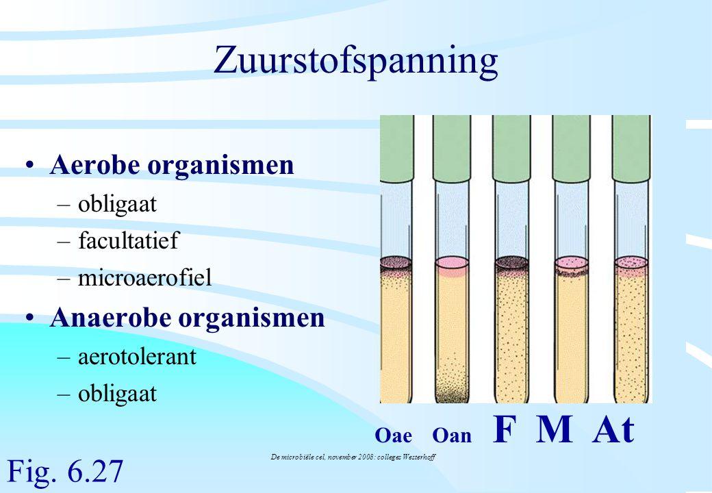 De microbiële cel, november 2008: colleges Westerhoff Zuurstofspanning Aerobe organismen –obligaat –facultatief –microaerofiel Anaerobe organismen –ae