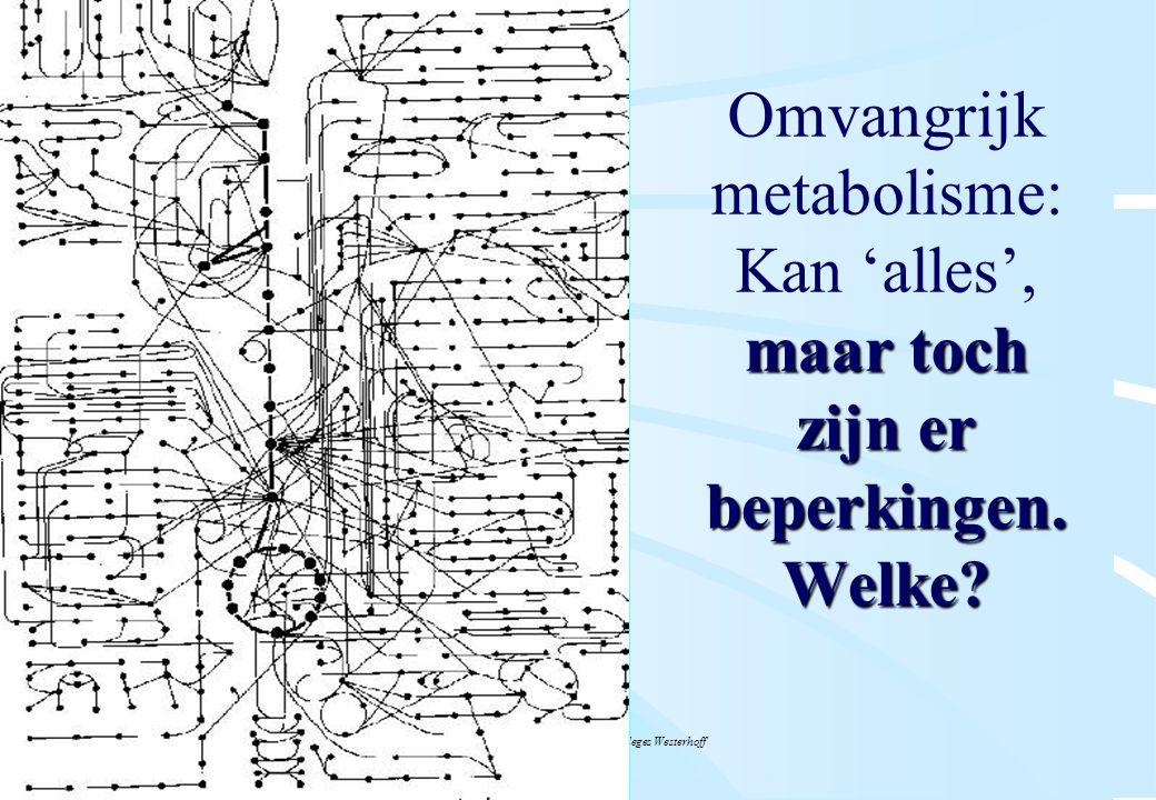 De microbiële cel, november 2008: colleges Westerhoff maar toch zijn er beperkingen. Welke? Omvangrijk metabolisme: Kan 'alles', maar toch zijn er bep