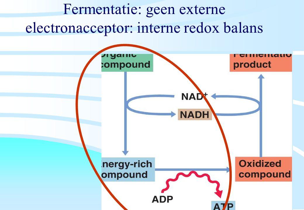 De microbiële cel, november 2008: colleges Westerhoff Fermentatie: geen externe electronacceptor: interne redox balans
