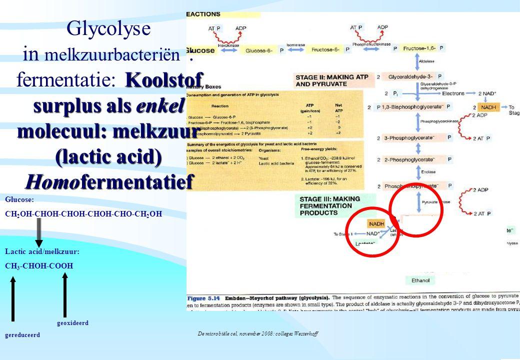 De microbiële cel, november 2008: colleges Westerhoff Glucose: CH 2 OH-CHOH-CHOH-CHOH-CHO-CH 2 OH Lactic acid/melkzuur: CH 3 -CHOH-COOH gereduceerd geoxideerd Koolstof surplus als enkel molecuul: melkzuur (lactic acid) Homofermentatief Glycolyse in melkzuurbacteriën : fermentatie: Koolstof surplus als enkel molecuul: melkzuur (lactic acid) Homofermentatief