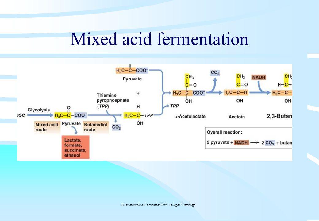 De microbiële cel, november 2008: colleges Westerhoff Mixed acid fermentation