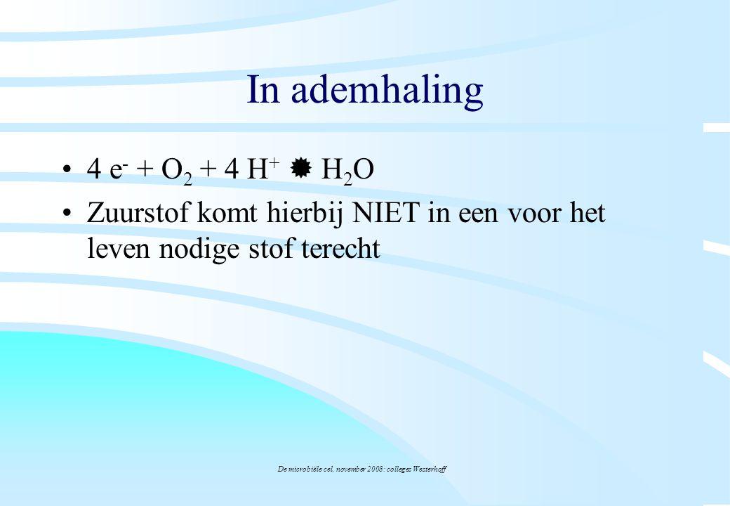 De microbiële cel, november 2008: colleges Westerhoff In ademhaling 4 e - + O 2 + 4 H +  H 2 O Zuurstof komt hierbij NIET in een voor het leven nodig