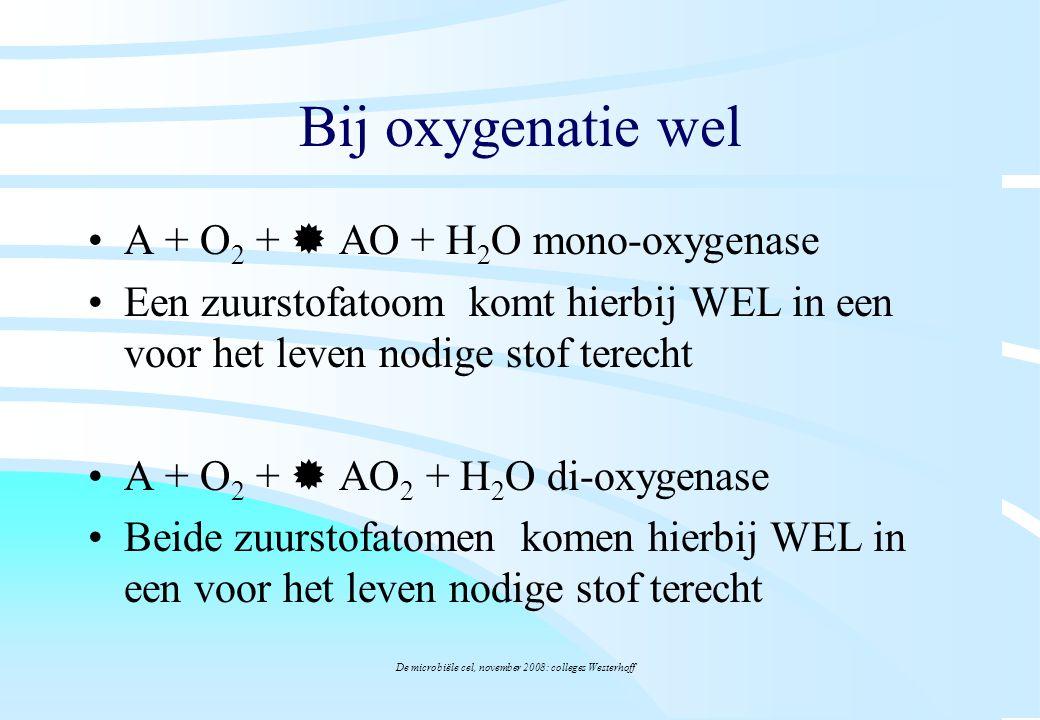 De microbiële cel, november 2008: colleges Westerhoff Bij oxygenatie wel A + O 2 +  AO + H 2 O mono-oxygenase Een zuurstofatoom komt hierbij WEL in e