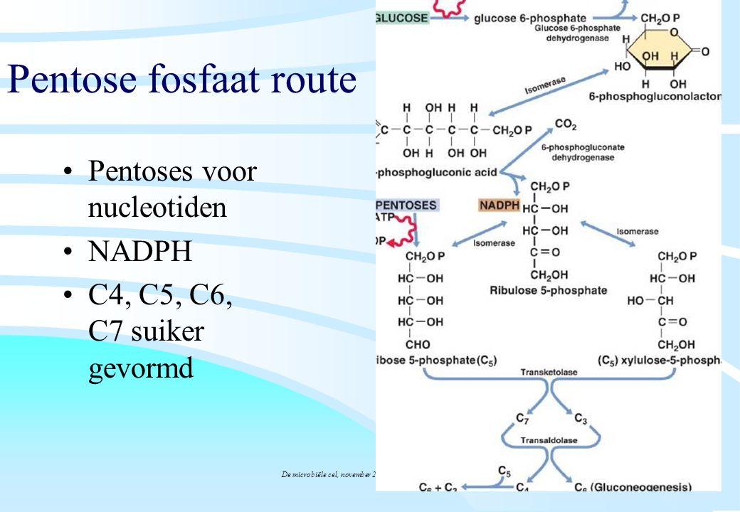 De microbiële cel, november 2008: colleges Westerhoff Pentose fosfaat route Pentoses voor nucleotiden NADPH C4, C5, C6, C7 suiker gevormd