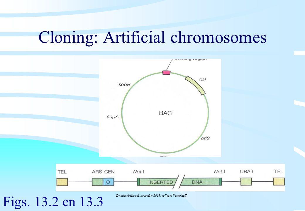 De microbiële cel, november 2008: colleges Westerhoff Cloning: Artificial chromosomes Figs. 13.2 en 13.3