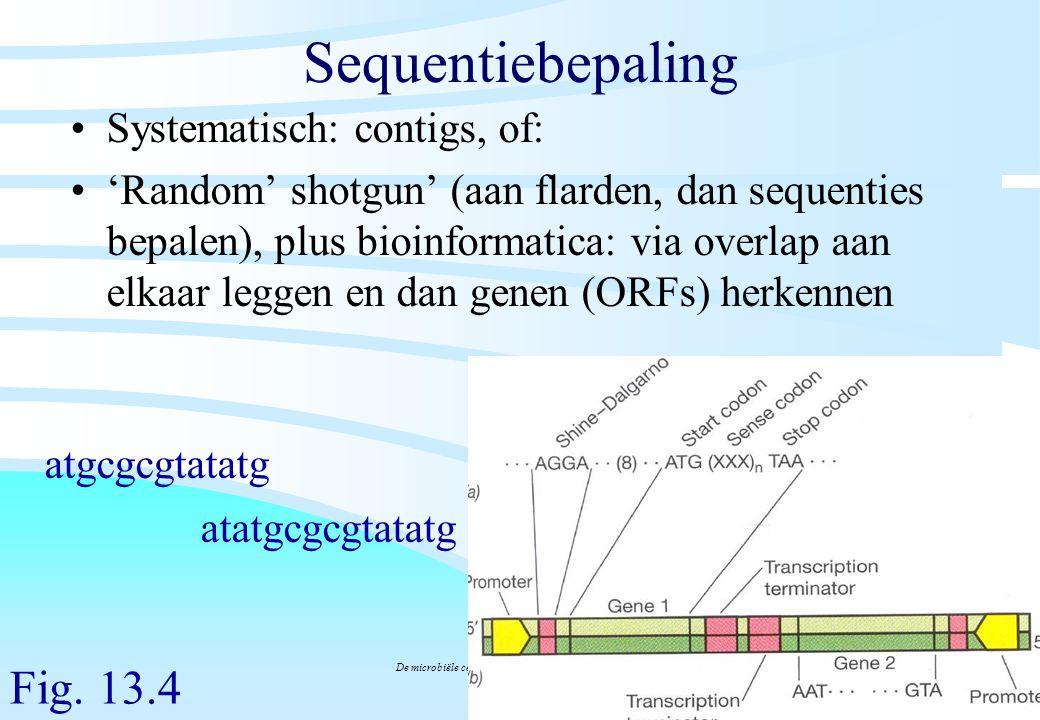 De microbiële cel, november 2008: colleges Westerhoff Sequentiebepaling Systematisch: contigs, of: 'Random' shotgun' (aan flarden, dan sequenties bepa