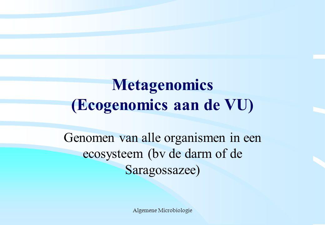 Algemene Microbiologie Metagenomics (Ecogenomics aan de VU) Genomen van alle organismen in een ecosysteem (bv de darm of de Saragossazee)