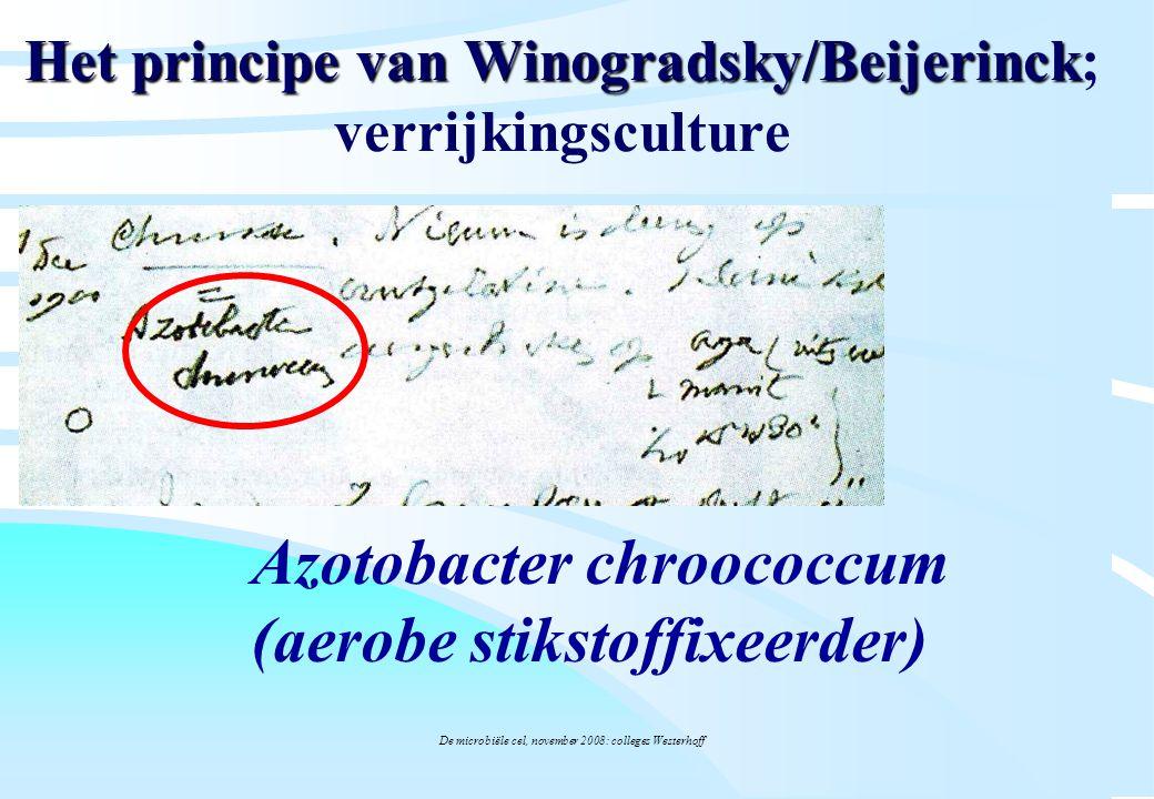 De microbiële cel, november 2008: colleges Westerhoff Het principe van Winogradsky/Beijerinck Het principe van Winogradsky/Beijerinck; verrijkingscult